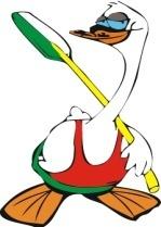 Logo RJS